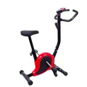 Magnetic Bike Red and Black