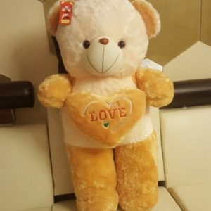 Cute Plush Teddy Bear with Heart Pillow